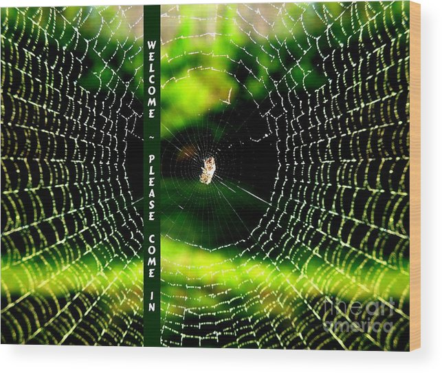 Spider Wood Print featuring the photograph Welcome by Renee Trenholm