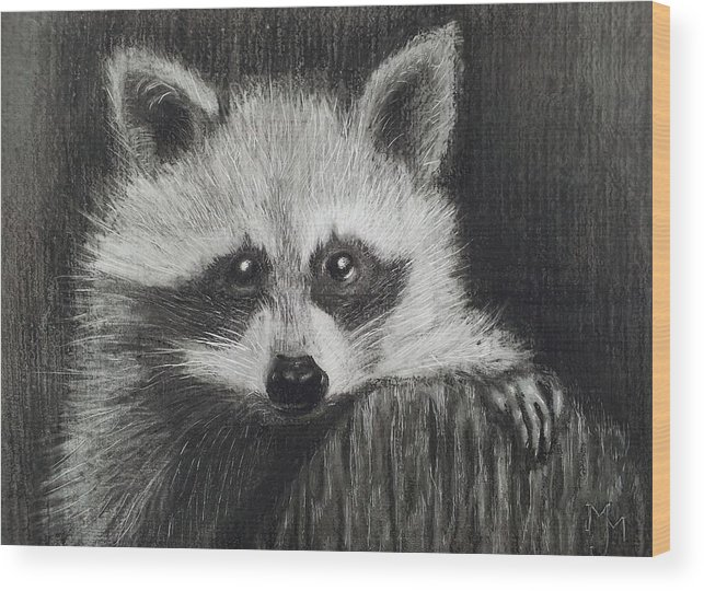 Scratchboard Wood Print featuring the drawing Bandit by Margaret Mackie