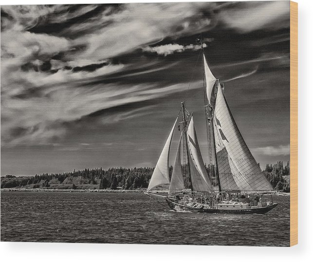 Windjammer Wood Print featuring the photograph Bowditch No. 1 by Fred LeBlanc