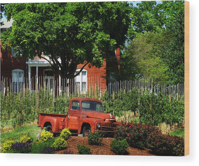 Apples Wood Print featuring the photograph Eckert's Old And New by John Freidenberg