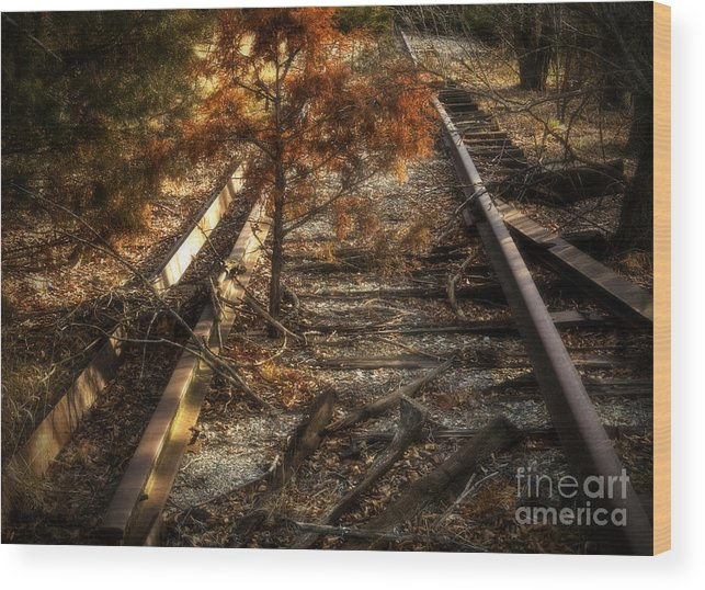 Kansas Wood Print featuring the photograph End Of The Line by Fred Lassmann