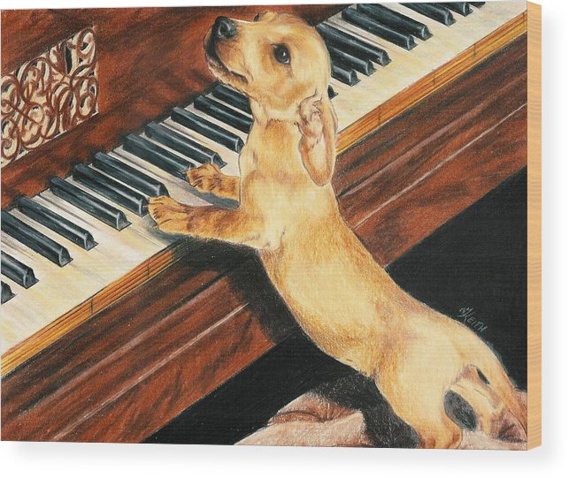 Dogs Wood Print featuring the drawing Mozart's Apprentice by Barbara Keith