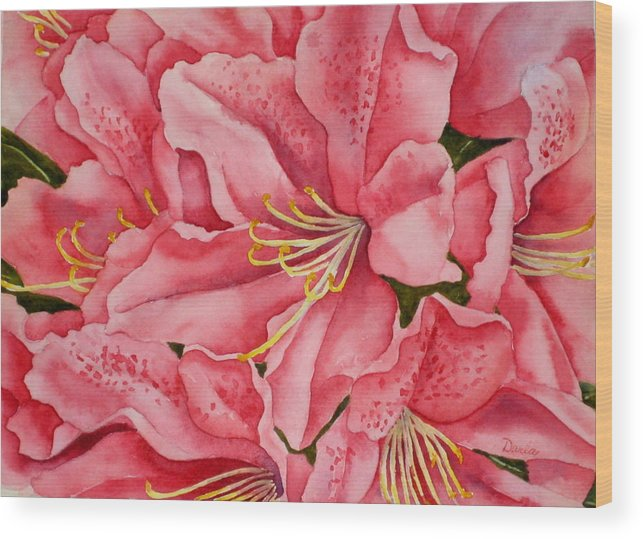 Watercolor Wood Print featuring the painting Spring Azalea by Darla Brock