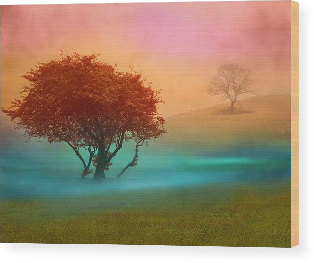 Trees Wood Print featuring the digital art The Red Tree by Nina Bradica