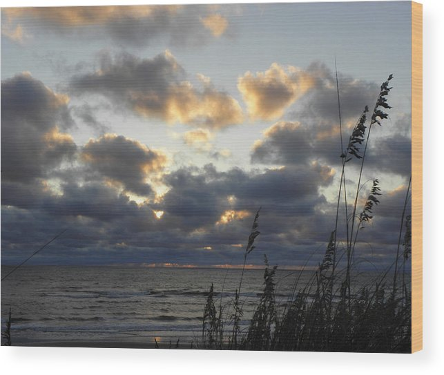 Sunrise Wood Print featuring the photograph Beyond The Seagrass by Kim Galluzzo Wozniak
