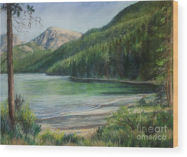 This Quiet Lake Is At The Source Of Wyoming's Green River. The Emerald Green Reflections Seem To Radiate Peace And Harmony.just West Of The Continental Divide Wood Print featuring the pastel Green River Lake by Susan Driver
