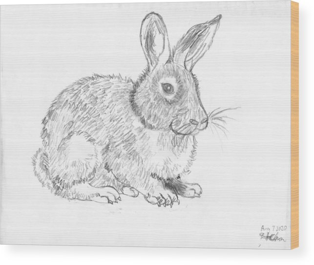 Bunny Wood Print featuring the drawing My Pet by Ming Yeung