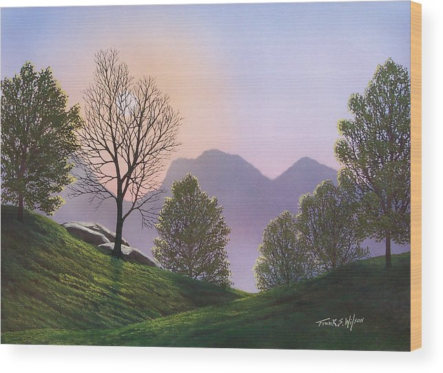 Landscape Wood Print featuring the painting Misty Spring Meadow by Frank Wilson