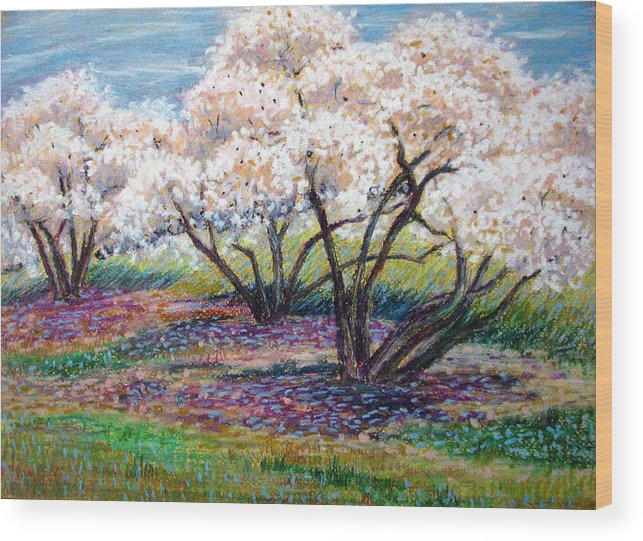 Oil Pastel Wood Print featuring the painting Spring Has Sprung by Art Nomad Sandra Hansen
