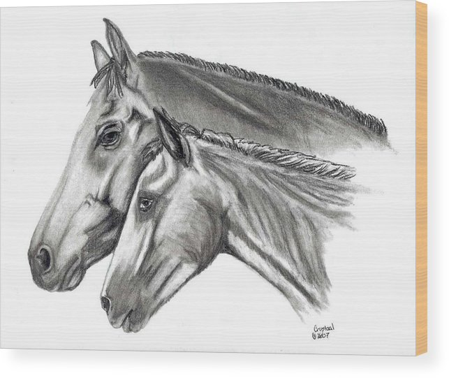 Charcoal Wood Print featuring the drawing Aj And Candy by Crystal Suppes