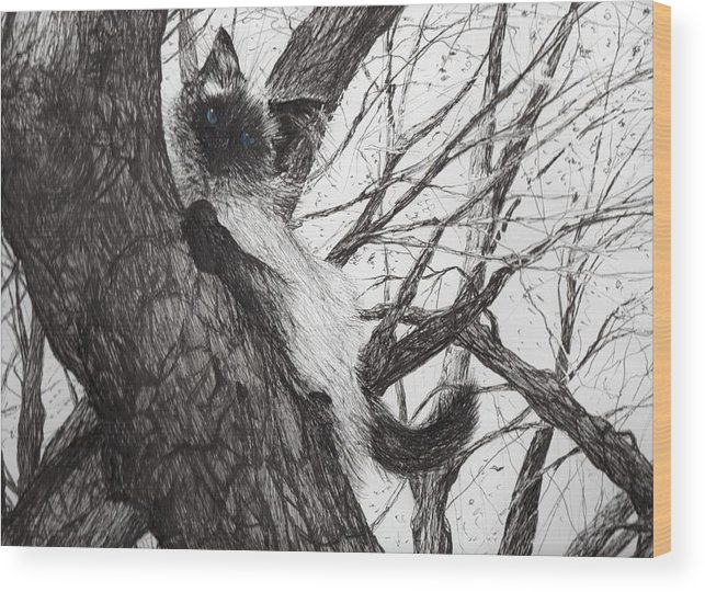Cat Wood Print featuring the drawing Baby Up The Apple Tree by Vincent Alexander Booth