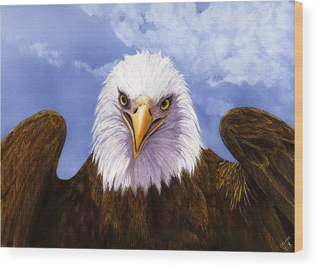 Eagle Wood Print featuring the painting Bald Eagle by Catherine G McElroy