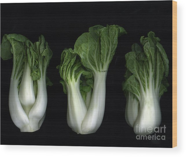 Slanec Wood Print featuring the photograph Bok Choy by Christian Slanec