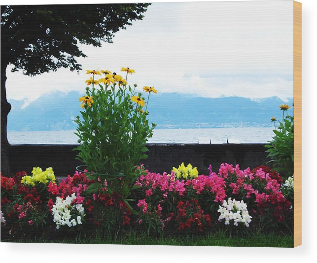 Flowers Wood Print featuring the photograph Floral by Jeff Barrett