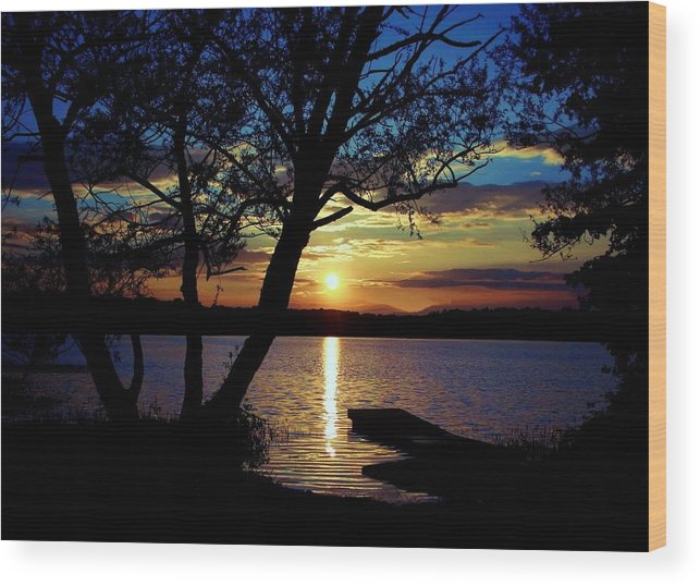 Landscape Wood Print featuring the photograph Go To Nature by Mitch Cat