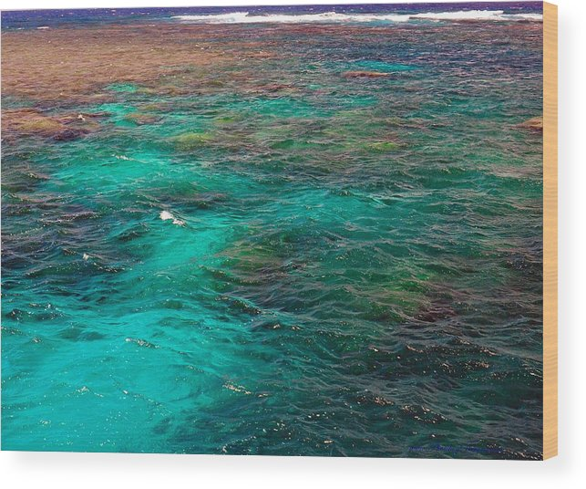 Australia Wood Print featuring the photograph Great Barrier Reef 2542 by PhotohogDesigns