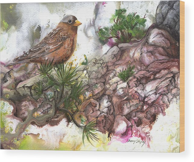Bird Wood Print featuring the painting Grey Crown Rosy Finch by Sherry Shipley