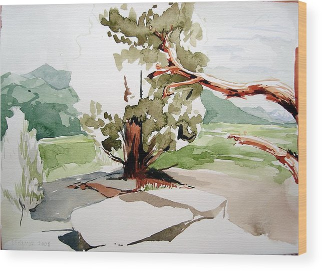 High Desert Landscape River Blue Mountains Outdoors Rural Wildlife Red Green Trees Rocks Nature Wood Print featuring the painting Kennedy Meadows Tree by Amy Bernays