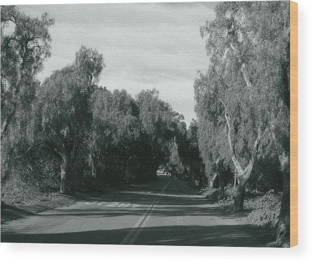 Landscape Wood Print featuring the photograph Lifes Path by Shari Chavira
