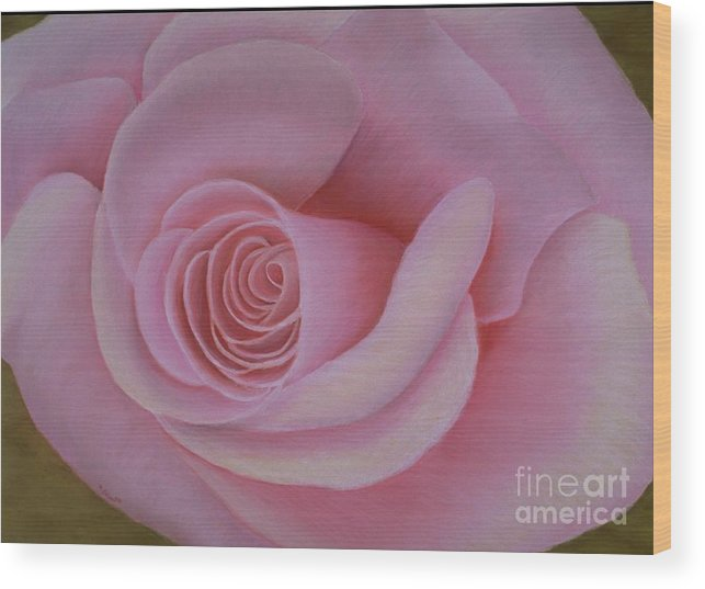Rose Wood Print featuring the painting Pink Blush by Mary Erbert