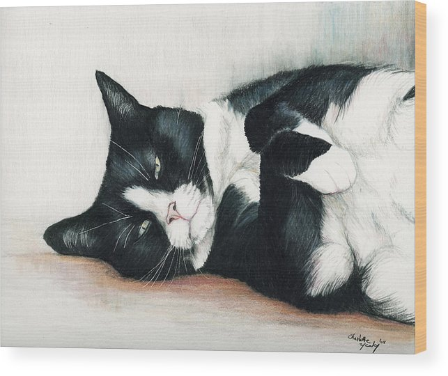 Cat Wood Print featuring the drawing Relaxed Tuxedo by Charlotte Yealey