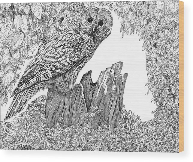 Birds Wood Print featuring the mixed media Russian Owl by Leonie Bell