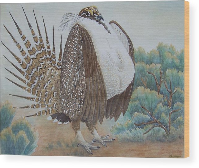 Wildlife Wood Print featuring the painting Sage Grouse by Cherry Woodbury