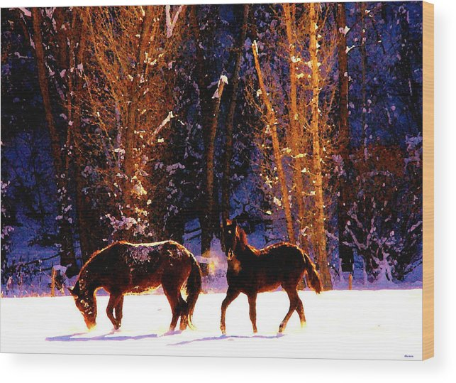 Wood Print featuring the photograph Spanish Mustangs Playing In The Powder Snow by Anastasia Savage Ealy