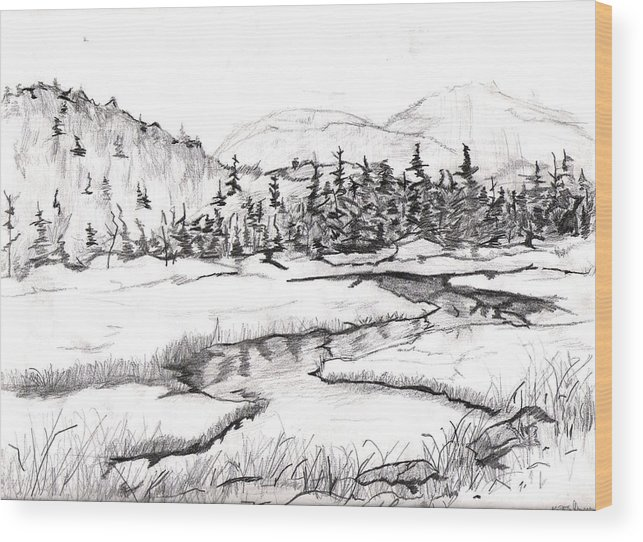 Landscape Wood Print featuring the drawing Stream by Katina Cote