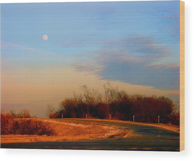 Landscape Wood Print featuring the photograph The On Ramp by Steve Karol