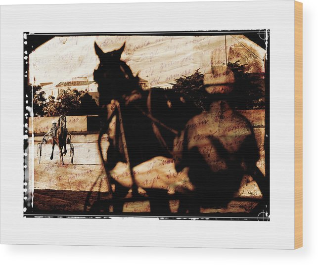 Horse Wood Print featuring the photograph trotting 1 - Harness racing in a vintage post processing by Pedro Cardona Llambias