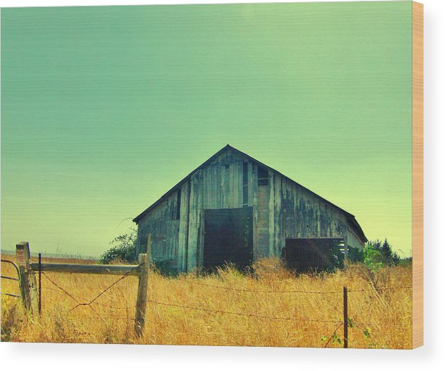 Sky Wood Print featuring the photograph Yellow Grass by Marilyn Diaz