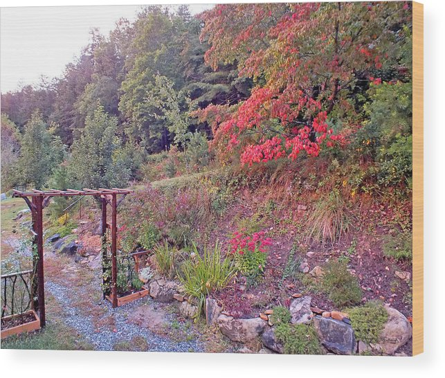 Duane Mccullough Wood Print featuring the photograph Arbor And Fall Colors by Duane McCullough