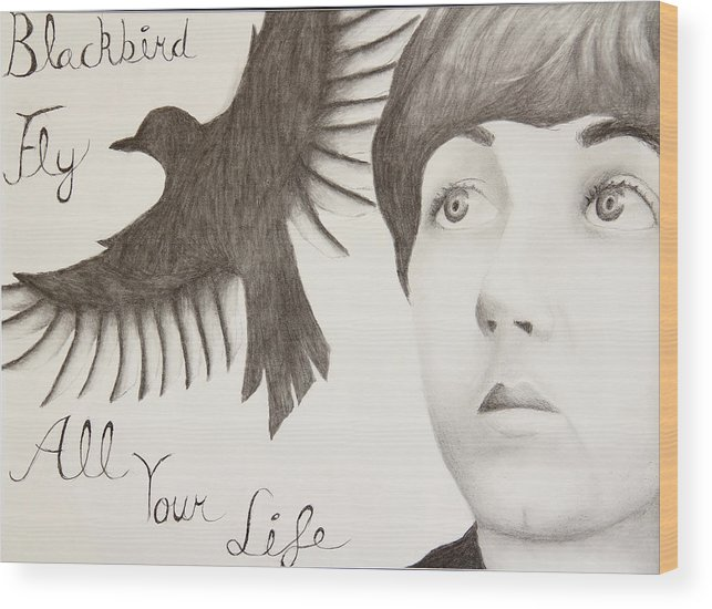 Paul Mccartney Wood Print featuring the drawing Blackbird by Kailie DeBolt