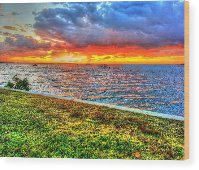 Florida Wood Print featuring the photograph Crazy Triple Stage by Rocky Fikki