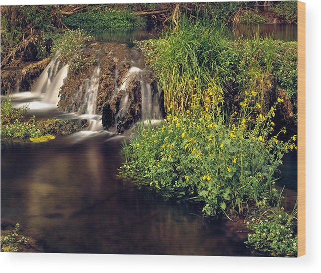 Arizona Wood Print featuring the photograph Fossil Creek by Leland D Howard