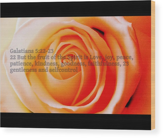 Pink Rose Wood Print featuring the photograph Fruit Of The Spirit by Ragnheidur