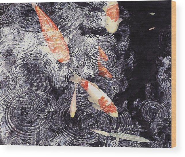 Koi Wood Print featuring the painting Koi In The Rain by Ted Head