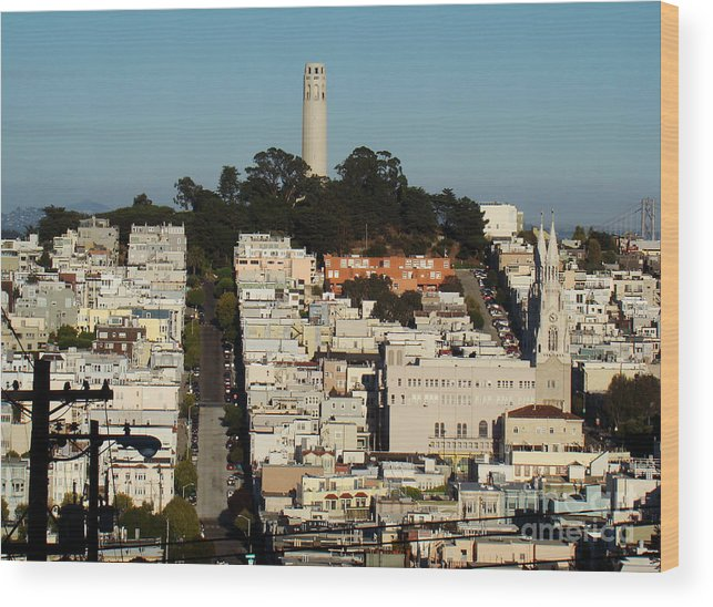 Landscape Wood Print featuring the photograph Nob Hill by Eva Kato
