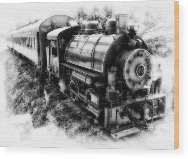 Americana Wood Print featuring the photograph Old #75 by Stephen Hooker