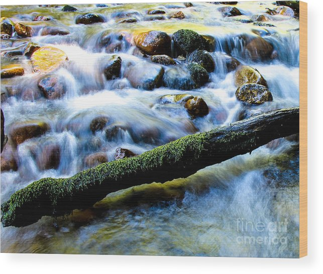 Stream Wood Print featuring the photograph What's Your Rush? by Nancy Harrison