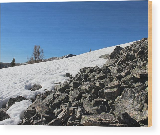 Snow Wood Print featuring the photograph Where Snow Meets Rock by Mark Eisenbeil