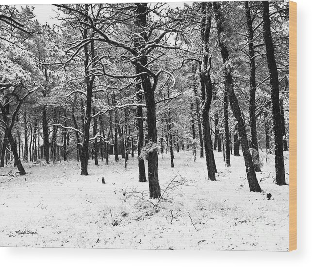 Wintry Woods Wood Print featuring the photograph Wintry Woods by Michelle Constantine