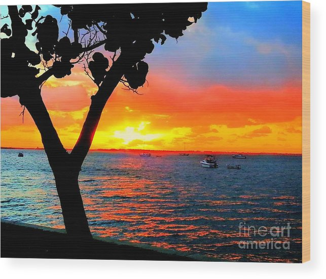Seascape Wood Print featuring the photograph Wishbone Tree by Rocky Fikki