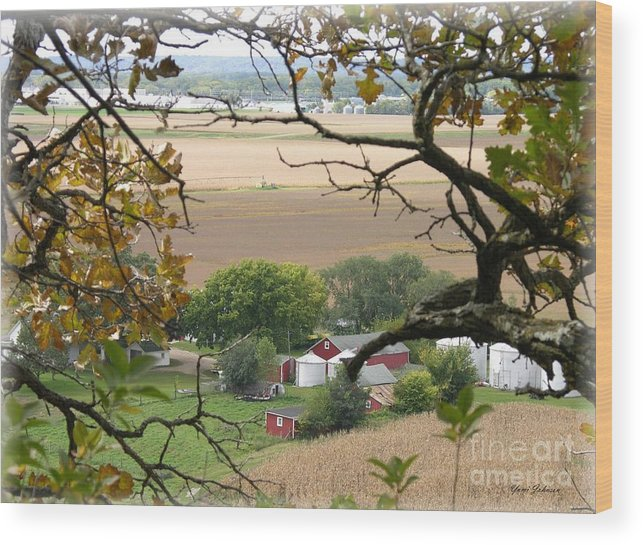 Farmland Wood Print featuring the photograph Framed By Tree by Yumi Johnson
