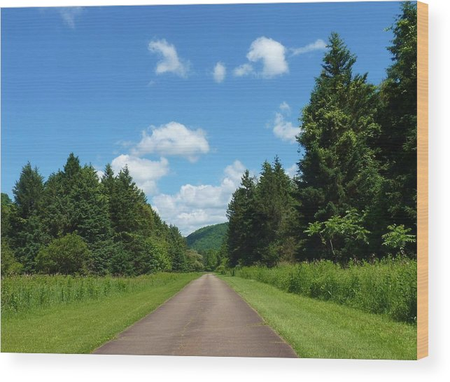 Scenic Drive Wood Print featuring the photograph Scenic Road by Jeanette Oberholtzer
