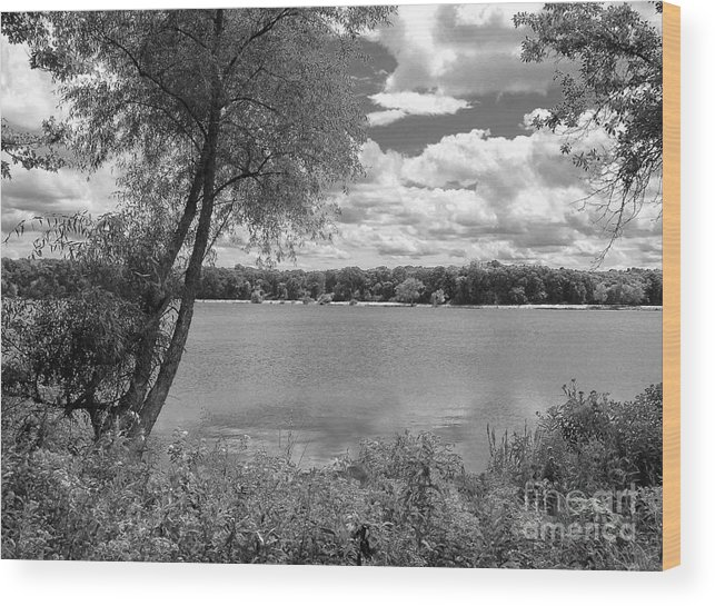 Landscape Wood Print featuring the photograph Sunny Day At The Lake by Cedric Hampton