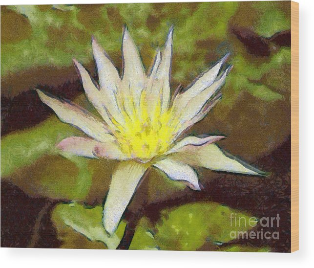 Water Lily Wood Print featuring the painting Water Lily by Odon Czintos