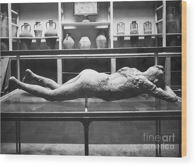 1873 Wood Print featuring the photograph Pompeii: Plaster Cast by Granger