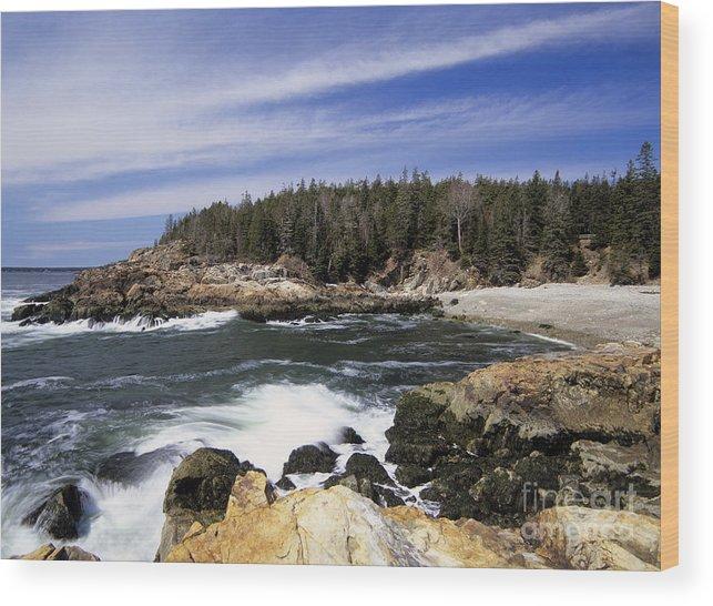 Atlantic Ocean Wood Print featuring the photograph Acadia National Park - Maine Usa by Erin Paul Donovan